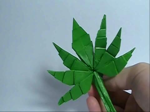 枫叶折纸_视频在线观看-爱奇艺搜索