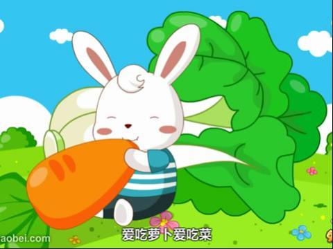 兔小贝儿歌 小猪小猪肥嘟嘟