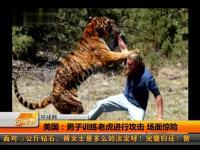 视频简介:长江水域再遭死猪入侵