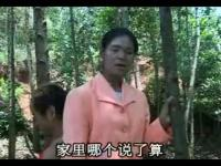 `安徽民间小调《四大美女卖风流》