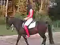 美女骑马 频道:热舞的美女 在线观看