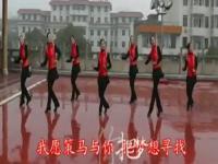 广场舞 大全视频