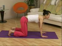 美女健身房最美的瑜伽