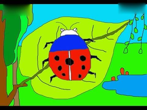 儿童简笔画画七星瓢虫[动物简