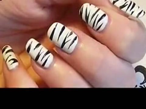 斑马纹指甲图案 动物系美甲彩绘视频