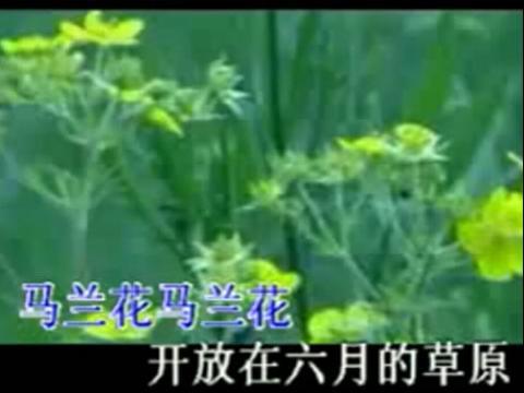 神话歌曲葫芦丝歌谱展示