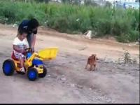 铲车和挖掘机合力工作视频
