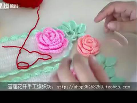玫瑰花的透明图展示