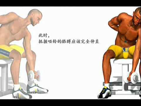 肱二头肌锻炼方法图解